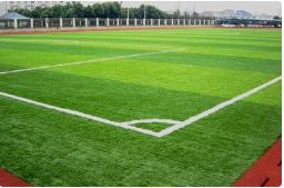 山东潍坊公园人造草坪施工