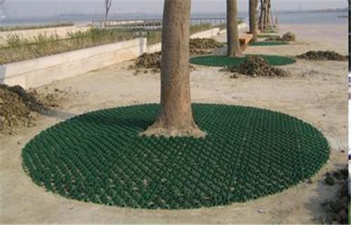 新疆停车绿化植草格规格