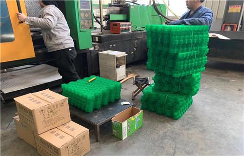 广东湛江50厚塑料植草格怎么铺法?