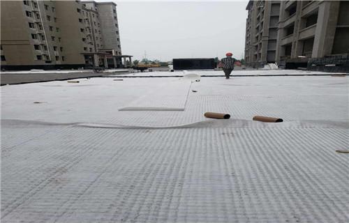 青海西宁停车位7公分植草格生产厂家联系方式